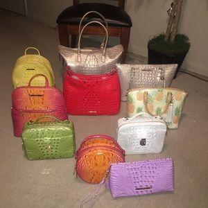 Brahmin Handbag Variety